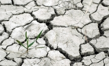 drought 1510788 640